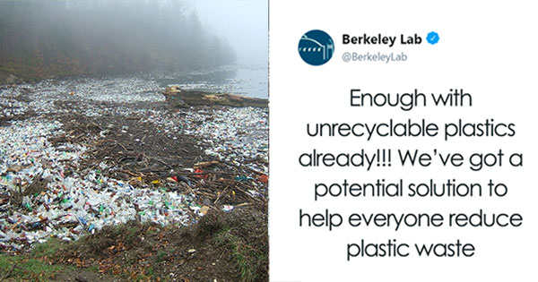 Scientists Create New Type Of Plastic That Prevents The Non-Recyclable Plastic Problem